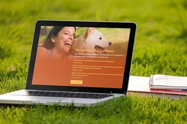 Smiley Dog Homepage Facelift